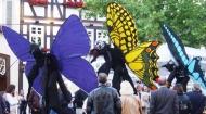 butterflies-3-beijing