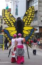 cardiff-butterflies-022