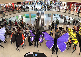 The Butterfly Collection remind the denizens of the Dubai mall of the wonders of nature