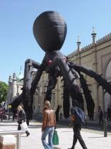 spiders-brighton-test